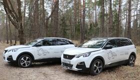 Peugeot 3008 и Peugeot 5008: по «размеру» и «на вырост»